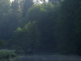 Svolna rivier